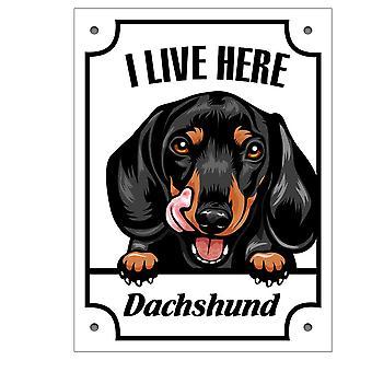 Placă metalică Kikande Dachshund semn câine