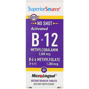 Superior Source, Activated B-12 Methylcobalamin, B-6 (P-5-P) & Methylfolate, 2,0