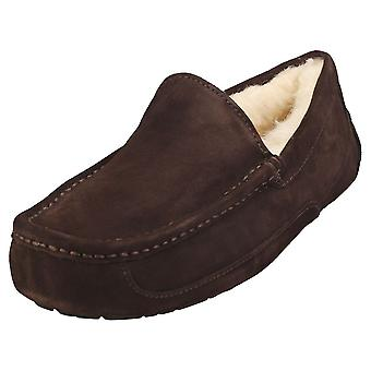 UGG Ascot Mens Slippers Shoes in Espresso