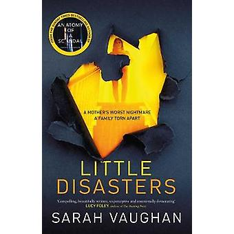 Little Disasters the compelling and thoughtprovoking new novel from the author of the Sunday Times bestseller Anatomy of a Scandal