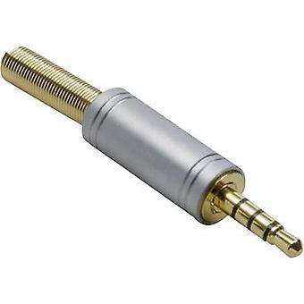 BKL électronique 1103088 3,5 mm jack audio Plug, droite nombre de broches: 4 stéréo Gold 1 PC (s)