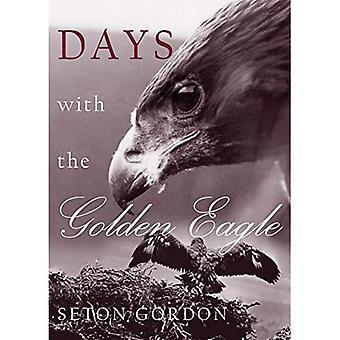 Jours avec l'aigle