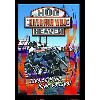 Hog Heaven: River Run Wild (Harley Rally) [DVD] USA import