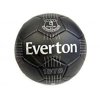 Everton FC React Mini Ball