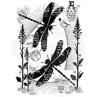 Woodware Clear Stamp Set Dancing Dragonflies