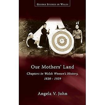Our Mothers' Land: Chapters in Welsh Women's History, 1830-1939