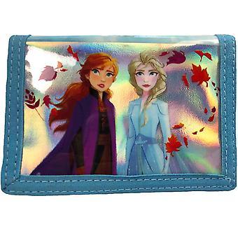 Frozen DEMI Wallet
