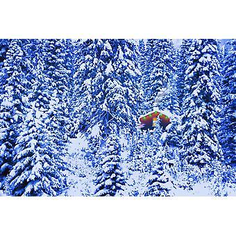 小冬の森 PosterPrint の中央にキャビンを点灯しています。