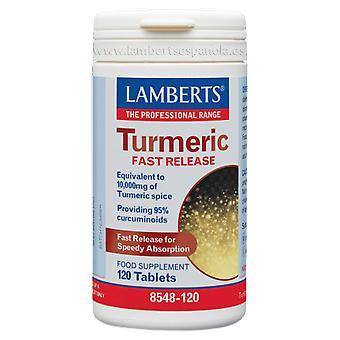 Lamberts Curmeric Quick Release 120 Capsules