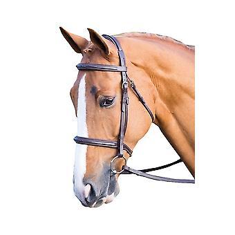 Salisbury Fairford læder hest tøjle