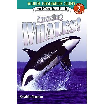 Amazing Whales by Sarah L Thomson