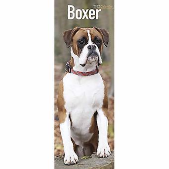 Otter House Boxer Slim Kalender 2022