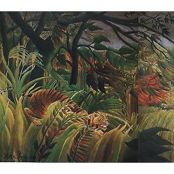 Surpreso, Henri Rousseau, 60x50 cm