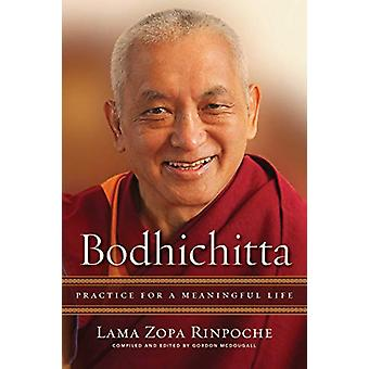 Bodhichitta - Practice for a Meaningful Life by Lama Zopa Rinpoche - 9