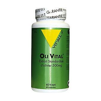 Olivital 500 mg 60 capsules of 500mg
