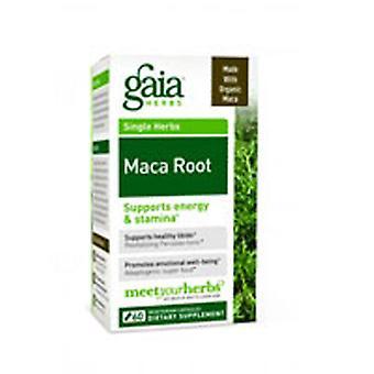 Gaia Herbs Maca Root, 60 CAPS