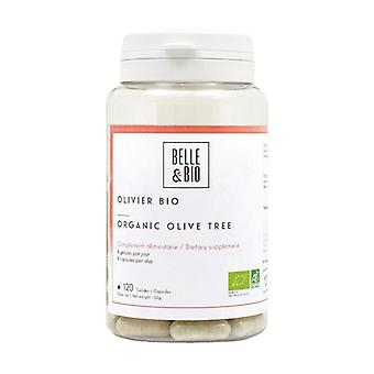 Orgaaninen oliivipuu 120 kasviskapselia