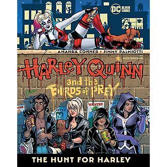 هارلي كوين والطيور الجارحة ومطاردة لهارلي من قبل جيمي بالميوتي