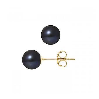 Korvat helmiä makeanveden korvakorut musta 7,5 mm ja keltainen kulta 750/1000