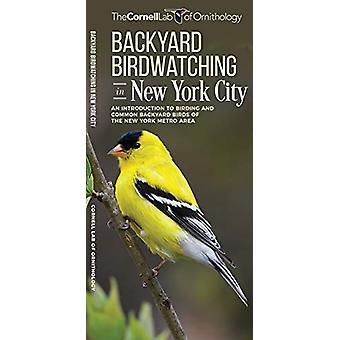 Backyard Birdwatching in New York City - An Introduction to Birding an