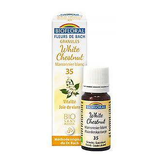 Chestnut White Organic Granules 300 granules