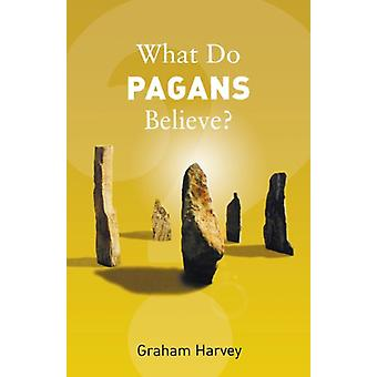 What Do Pagans Believe? by Graham Harvey - 9781862078376 Book