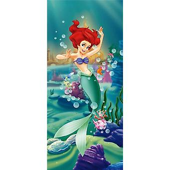 Disney Princess Ariel Wall Decoration