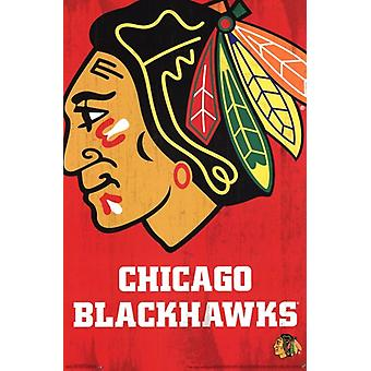 Chicago Blackhawks - Logo 2013 juliste Juliste Tulosta
