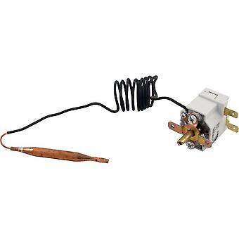 Hayward IDXTST1930 Thermostat für H-Serie Low-Nox induzierte Entwurf Heizung