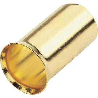 Sinuslive Ferrules 10 mm² gold-plated