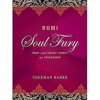 Rumi: Ziel Fury: Rumi en Shams Tabriz op vriendschap