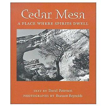 Cedar Mesa: En ort där sprit Dwell (Desert platser)