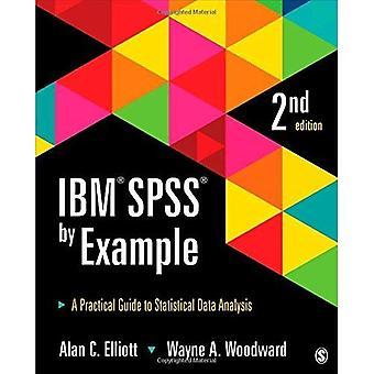 IBM SPSS mit gutem Beispiel voran: ein praktischer Leitfaden zur statistischen Datenanalyse
