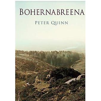 Bohernabreena In oude foto 's