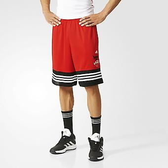 Adidas Chicago Bulls NBA mannen basketbal Shorts - AH5059