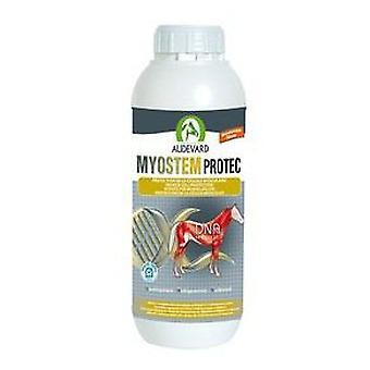 Audevard Myostem Protec (Horses , Food , Food complements)