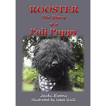 Rooster  the Diary of a Puli Puppy by Evans & Jacki