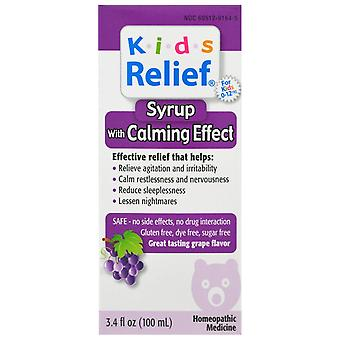 Homeolab USA, Kids Relief, Syrup with Calming Effect, Grape Flavor , 3.4 fl oz (