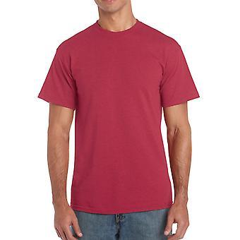 Gildan G5000 Plain Heavy Cotton T Shirt en rouge cerise antique