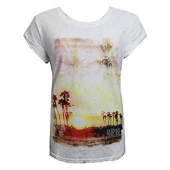 בעלי חיים נשים אביונה גרפיקה חולצת טריקו קיץ מזדמנים העליון לבן CL5SG324 001