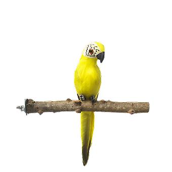 Pet Parrot Bird Wild Grape Wood Pole Prickly Ash Wood Standing Stick