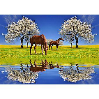 Cavalos mural de papel de parede e as cerejeiras florescendo