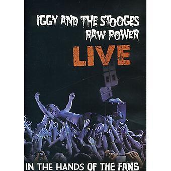 Iggy & the Stooges - Raw Power Live: dans les mains de l'importation des USA de Fans [DVD]