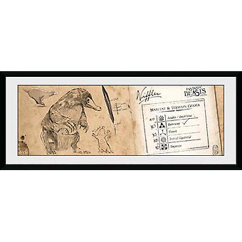 Fantastic Beasts Niffler Framed Collector Print
