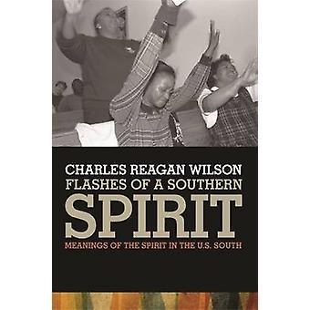 Glimtar av en södra ande betydelser av Anden i amerikanska söder av Wilson & Charles Reagan