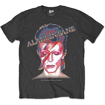 Gris David Bowie Aladdin Sane Rock T-shirt officiel