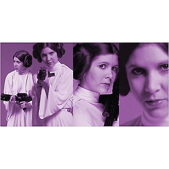 Star Wars Princesse Leia Pose Toile Plaque 50-100cm
