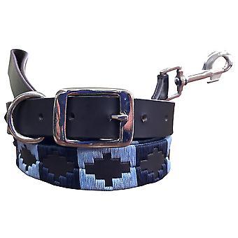 Carlos diaz äkta läder polo hund krage och bly set cdkupb931