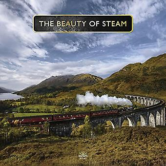 Beauty Of Steam by P. Waller - 9781912332212 Book