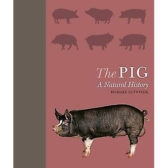 The Pig - A Natural History by Richard Lutwyche - 9781782406174 Book